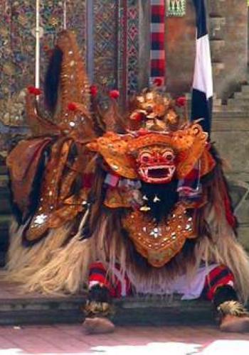 Bali Tours + Activities