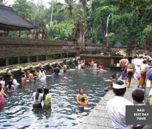 Ubud And Holy Spring Water Temple Tour