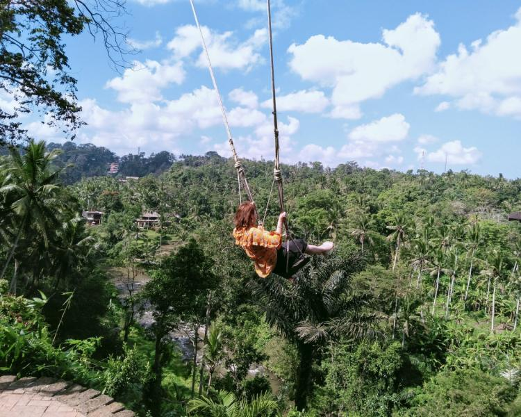 Bali Swing Ubud Prices Reviews