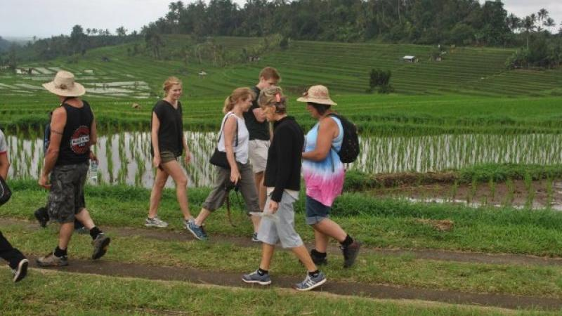 Bali Rice Terrace and Village Trekking