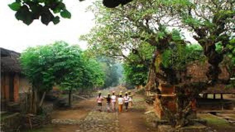 The Royal Court Klungkung and Tenganan Village Tour