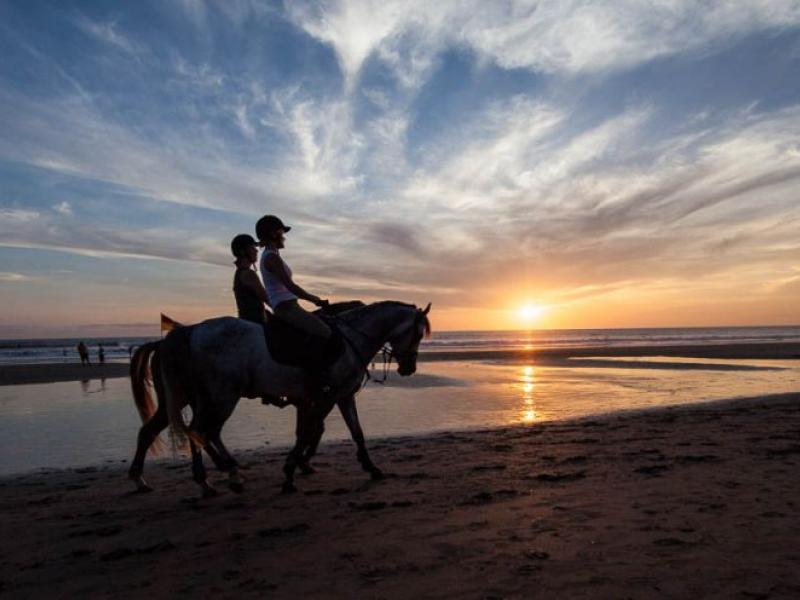 Bali Back Horse Riding