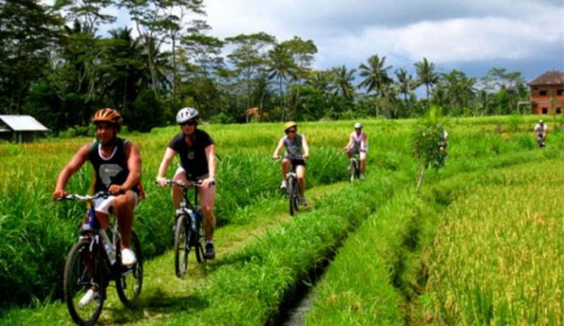 Bali Mount Bike Adventure