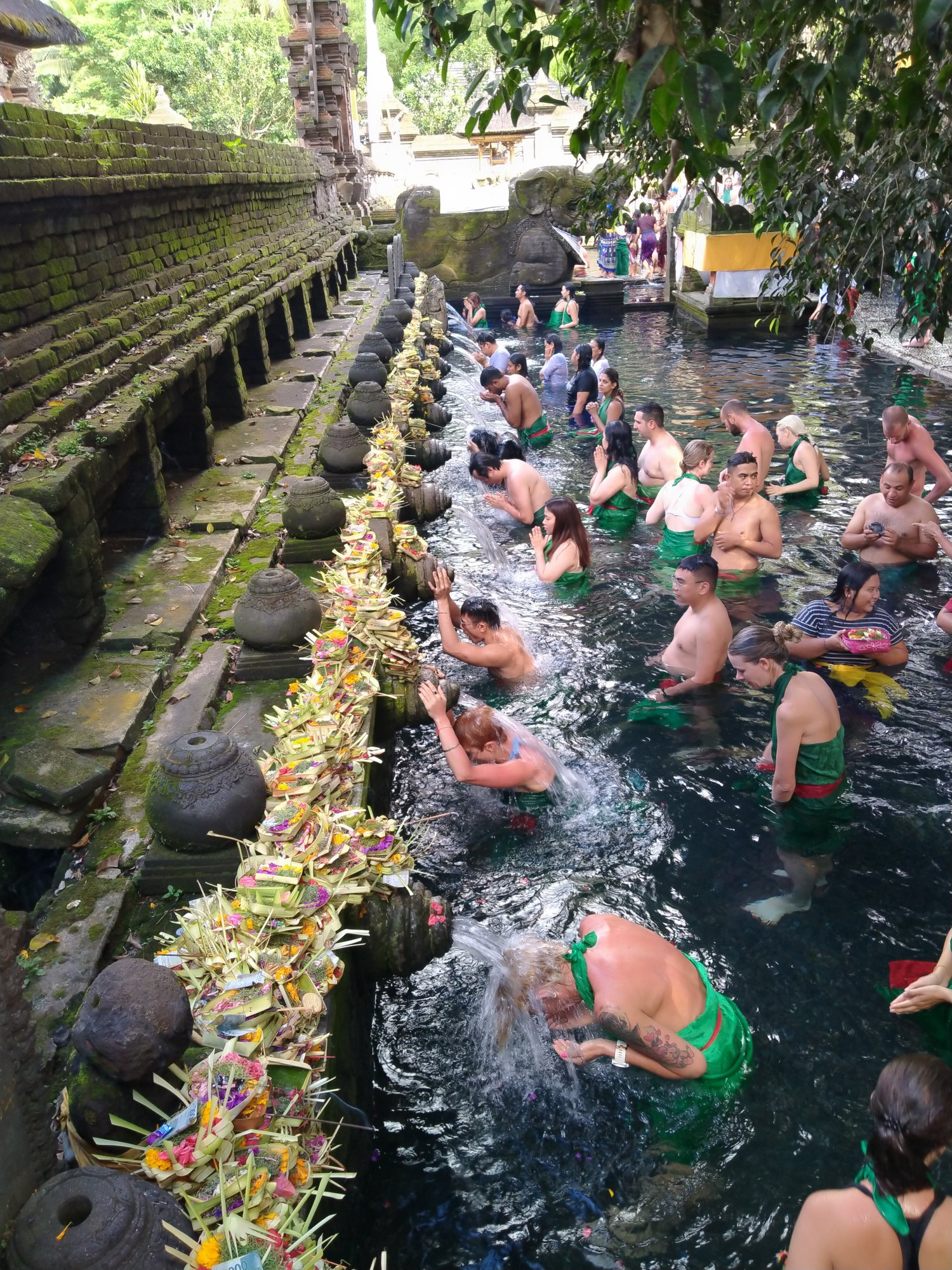 Ubud And Tirta Empul The Holy Springs Temple Full Day Tour