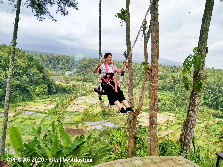 Amazing Bali Swing  Birds Nest Ubud Tour