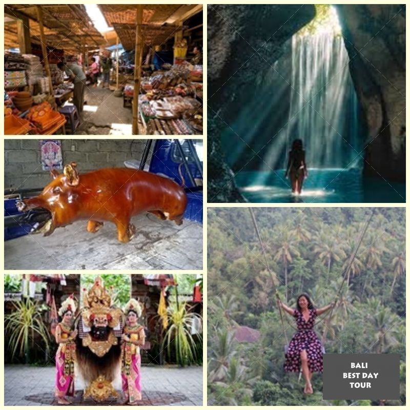 Ubud Full Day Combination Tour