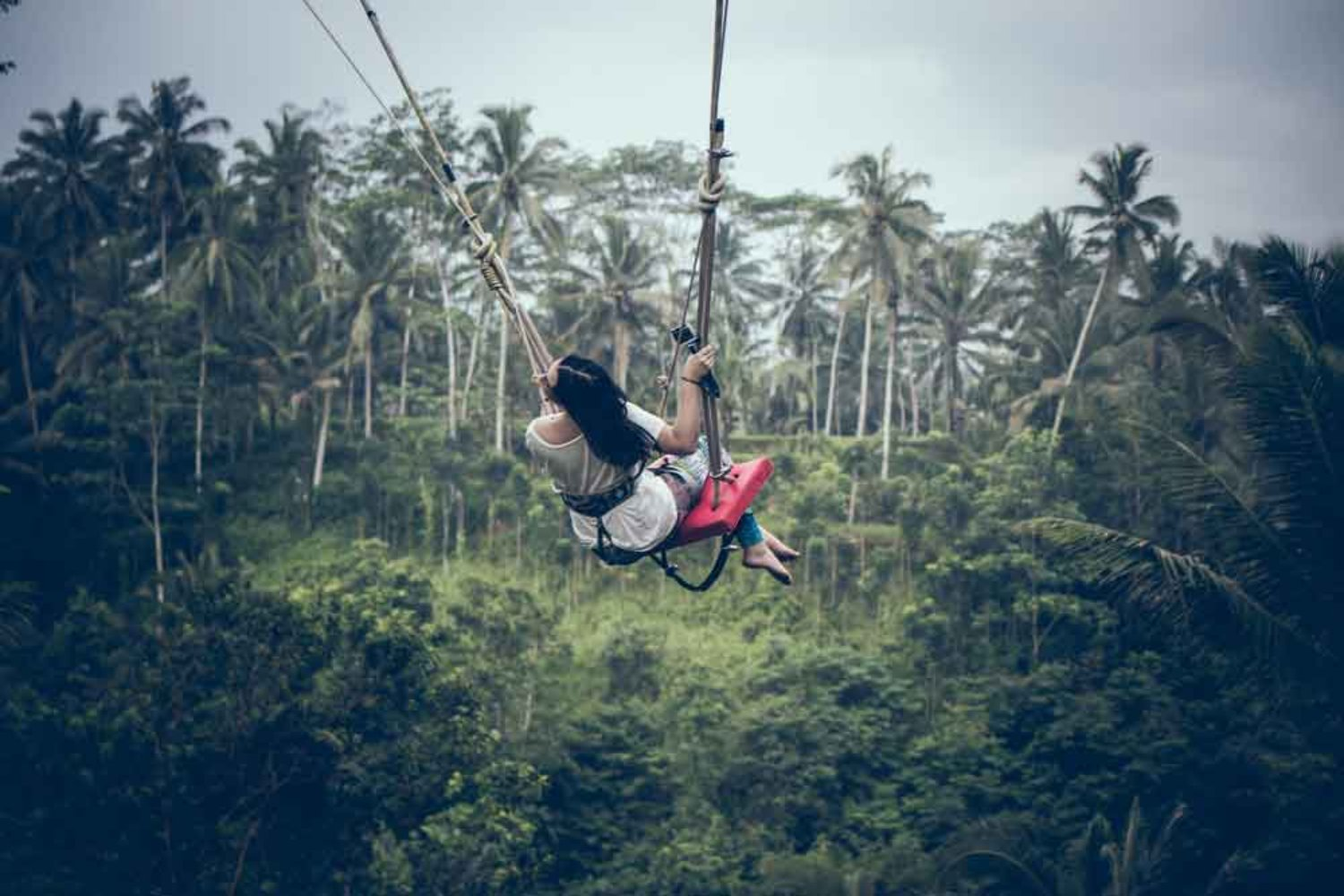4 Recommended Things to Do in Ubud Day Trip from Canggu