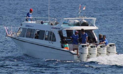 Fast Boat Mola Mola Express (1)
