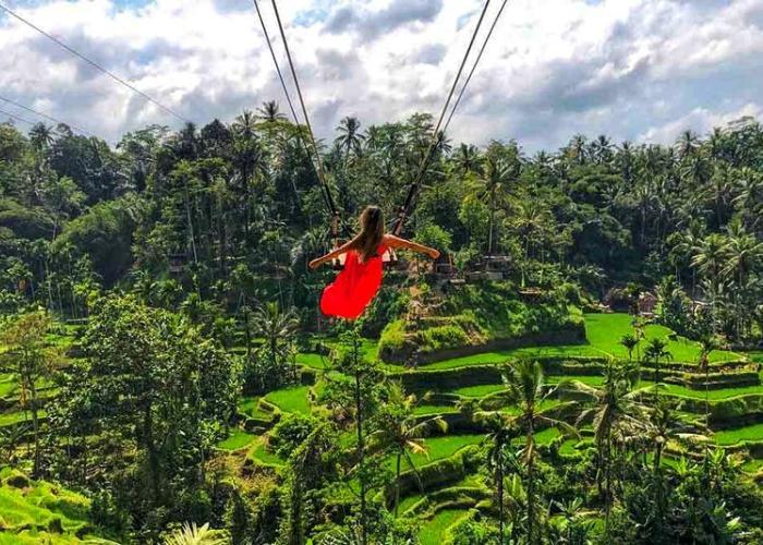 Bali Swing and Ubud Tour