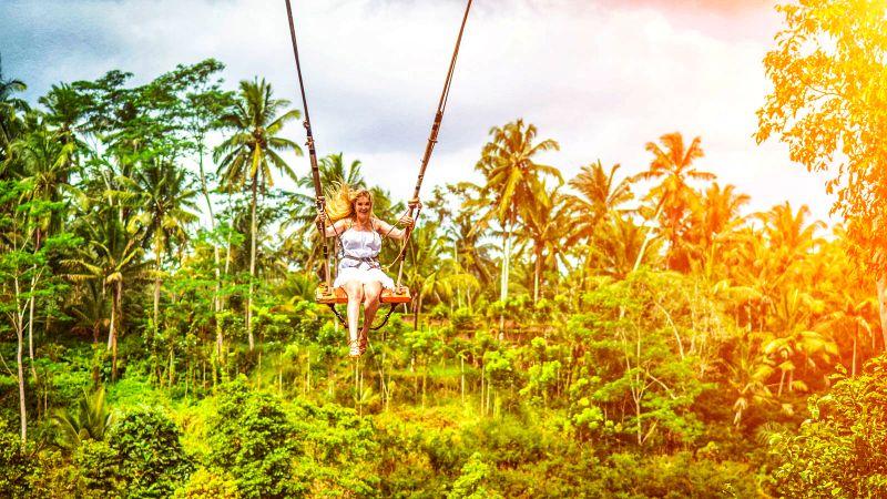 Ubud Swing Rice Terrace