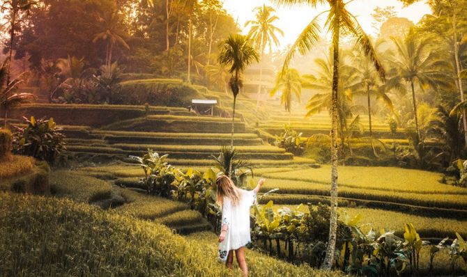 Tegalalang Rice Terrace Tour